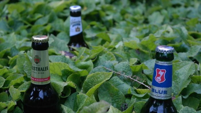 Alkoholfrie øl kap. 2: Beck's – Blue / Clausthaler – Extra Herb / Dithmascher –Alkoholfrei